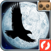 Moon Bird logo