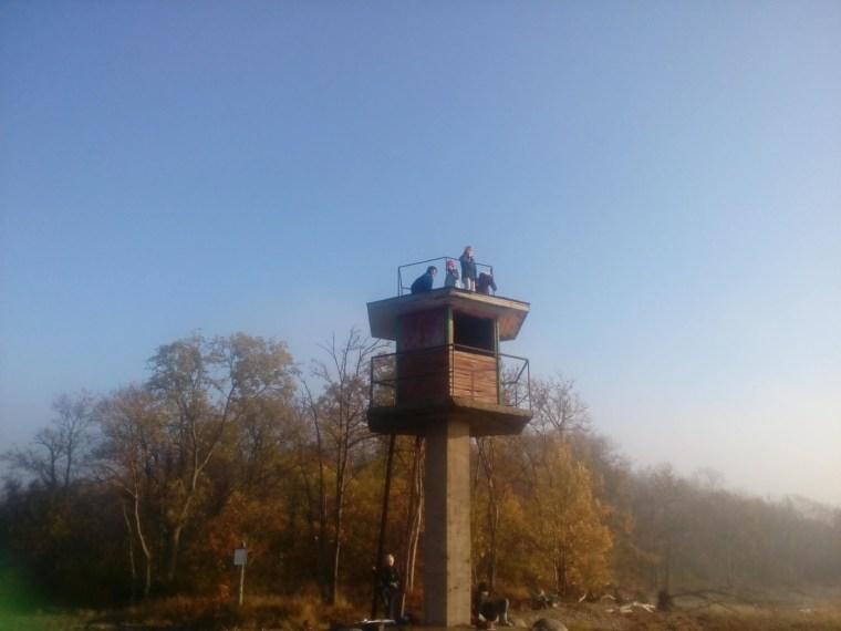Julgemad ronisid torni