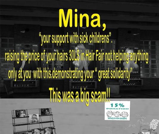 MinaBig Scam
