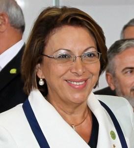 Ideli Salvatti, Secretaria de Acceso a Derechos y Equidad, OEA
