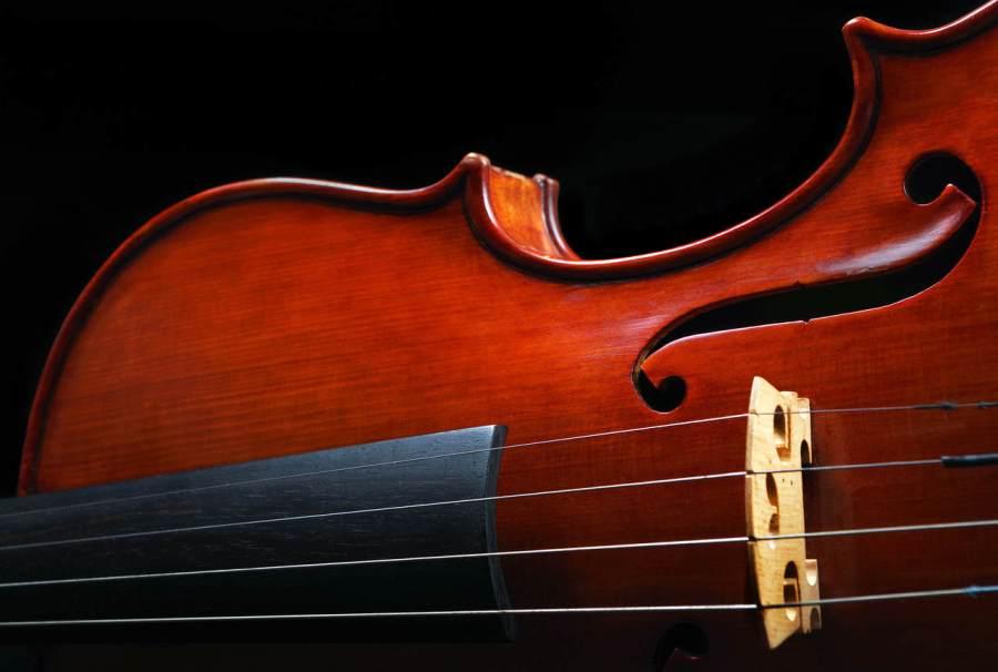 curso de violino popular brasileiro com ricardo herz