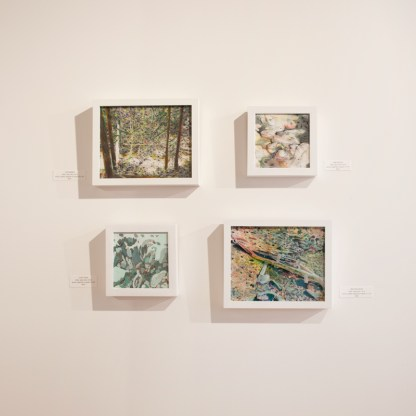 Paintings by Jane Irwin at Sivarulrasa Gallery, Almonte, Ontario