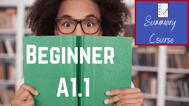 Beginner A1.1 Summary Course Image