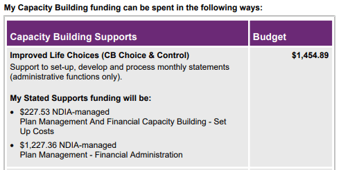 Cost Questions - An example of NDIS Capacity Building Funding Budget allocation.