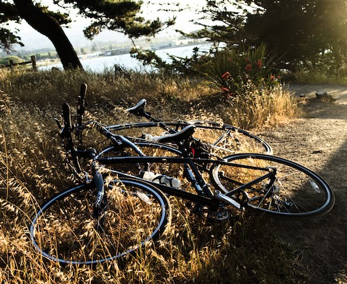 bikes by the bay