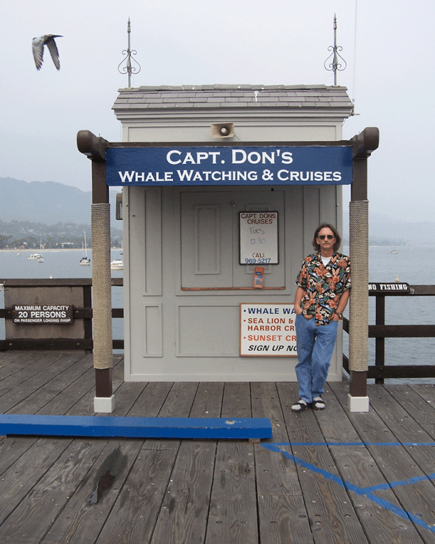 Capt Don's Whale Watching