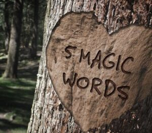The Five Magic Words