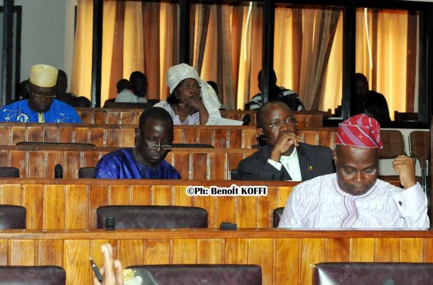 Assemblée Nationale: L'optimisation du service de la SONEB préoccupe les députés