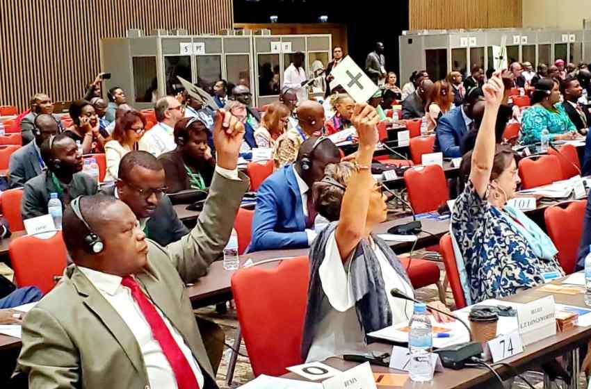 Sessions des Assemblées parlementaire ACP et parlementaire paritaire ACP-UE à Kigali : Robert Gbian fait le point des sujets examinés et des grandes résolutions adoptées