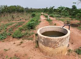 Education / L'Institut universitaire d'enseignement professionnel de métier agricole s'ouvre à Djougou dès la rentrée prochaine