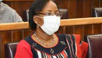 Eléonore Yayi Ladékan, Ministre de l'Enseignement supérieur et de la Recherche scientifique