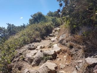 El camino es rocoso pero vale la pena subirlo.