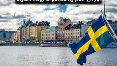 الحصول على تصريح الإقامة في السويد دون زواج أو عقد عمل سنة 2020