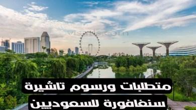 تاشيرة سنغافورة للسعوديين أون لاين اهم متطلبات ورسوم