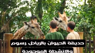 رسوم دخول حديقة الحيوان بالرياض وأهم الانشطة الموجودة بها