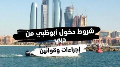 شروط دخول أبوظبي من دبي وأبرز إجراءات والقوانين