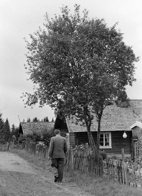 Ved Prøysenstua. Foto Johan Brun