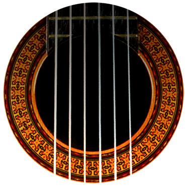 NVF-gitarhull