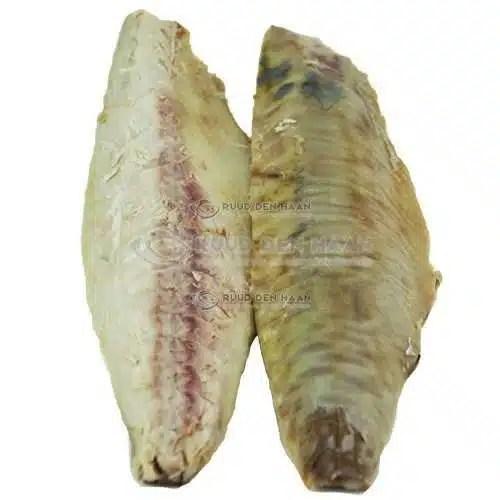 Gestoomde makreelfilet