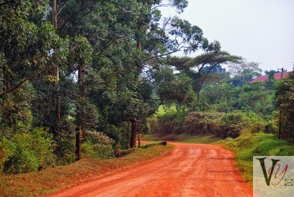 Africa's red Roads