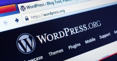 Top plugin Wordpress