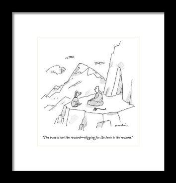 guru dog mountain