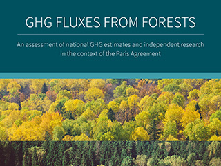 GHG Fluxes from Forests Forests