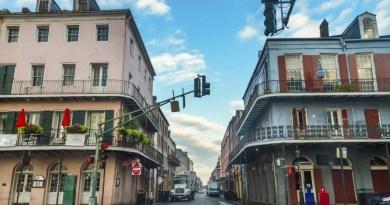 Nova Orleans Vision Art NEWS