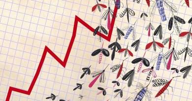 camilo mosquitos1 web Vision Art NEWS