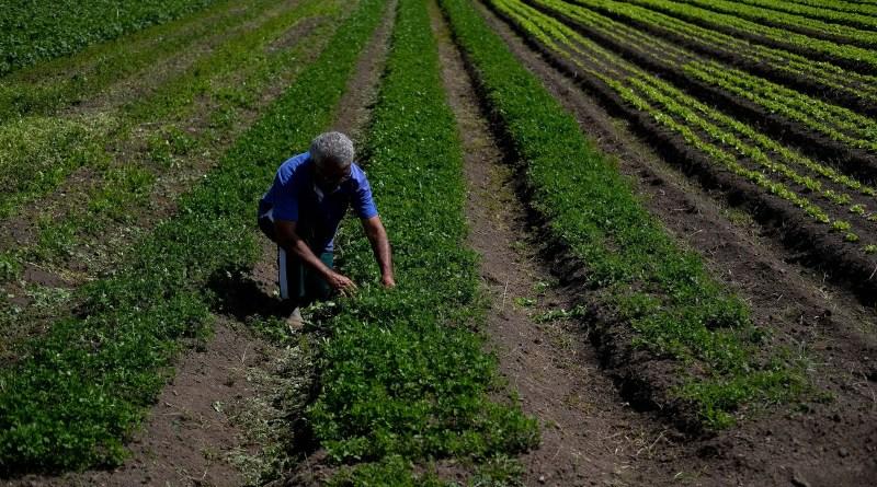 Governança é o principal desafio do agronegócio no ESG, dizem especialistas – 23/10/2021 – Mercado