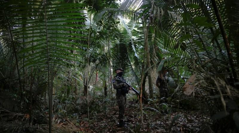 Militares na Amazônia custaram R$ 550 mi e não baixaram desmatamento – 24/10/2021 – Ambiente