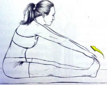 forward bend - fix flat back syndrome