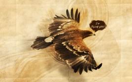 eagle-1920x1200