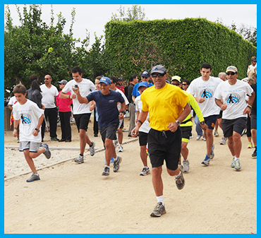 Image shows runners at the start of the Alcon Walk, Run , Ride for World Access For The Blind in 2014.