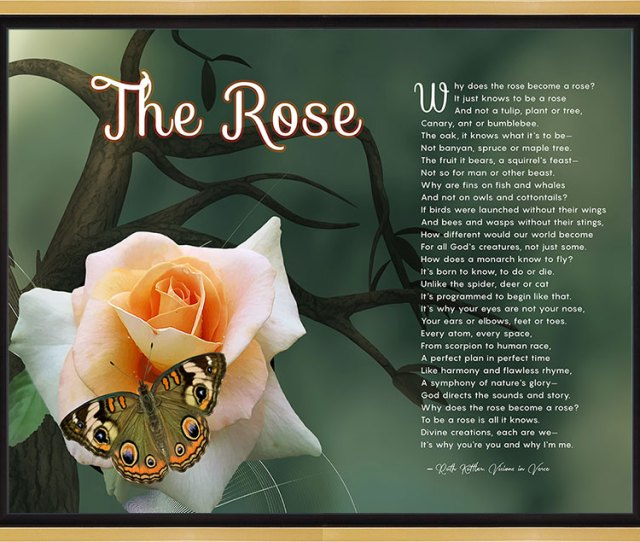 The Rose Tree Branch Art Poem In Gold And Black Canvas Frame With