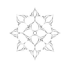 Rosate Terns by Alex Foy