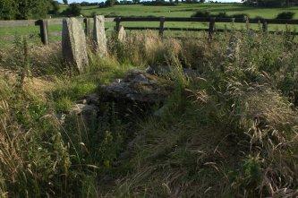 01-drumlohan-ogham-stones-souterrain-waterford-ireland