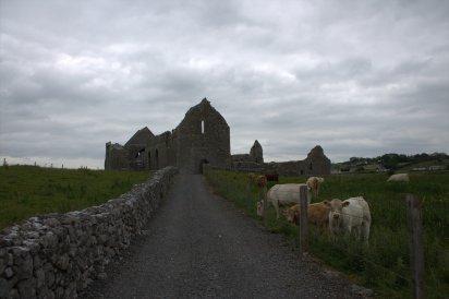 01-abbeyknockmoy-abbey-galway-ireland