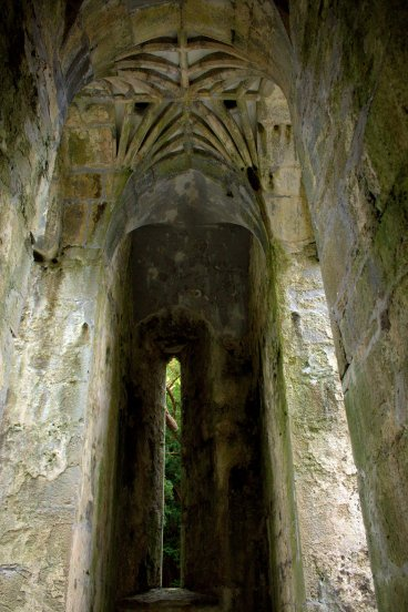15. Muckross Abbey, Kerry, Ireland