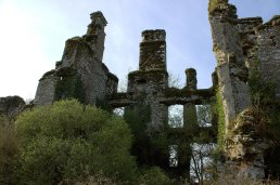 05. Castlelyons Castle, Cork, Ireland