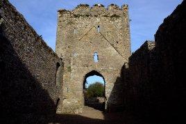 05. Castlelyons Friary, Cork, Ireland