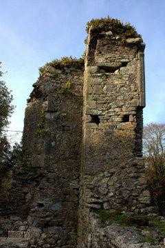 15. Castlelyons Friary, Cork, Ireland