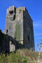 15. Grannagh Castle, Kilkenny, Ireland
