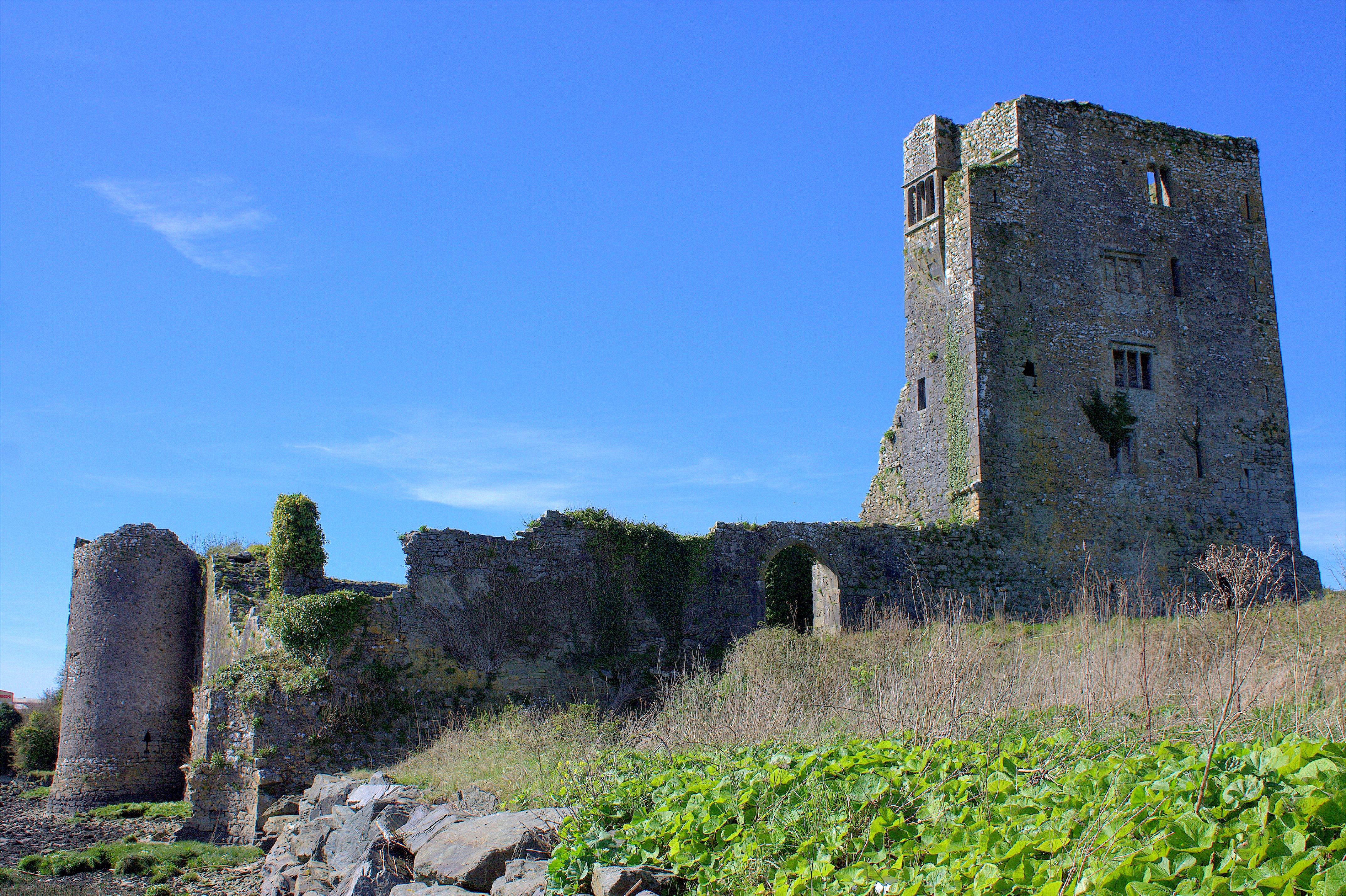 18. Grannagh Castle, Kilkenny, Ireland