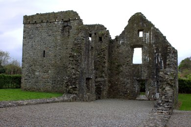 08. Carlingford Priory, Louth, Ireland