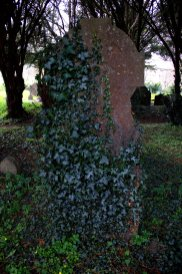 08. St Patrick's Church, Kildare, Ireland