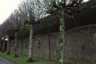 09. Heywood Demesne, Laois, Ireland