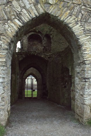 18. Trim Castle, Meath, Ireland