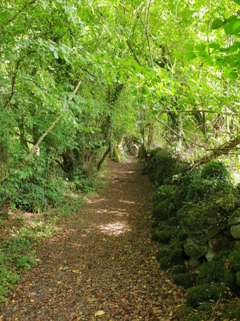 01. Mihanboy Portal Tomb, Roscommon, Ireland