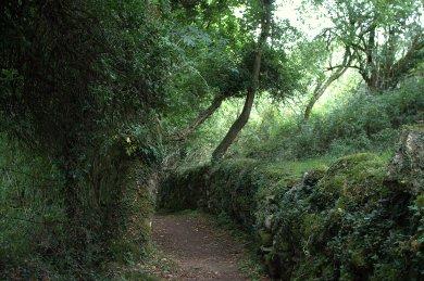 09. Mihanboy Portal Tomb, Roscommon, Ireland